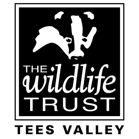 Tees Valley Wildlife Trust Logo